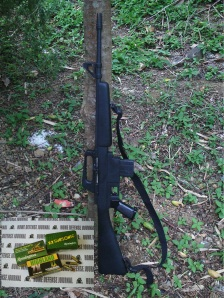 Basic necessity: every household should have a .22LR carbine like this Armscor M-1600. Styled along the lines of an M-16, it has intimidation value! This economically priced semi-auto will be priceless if law & order breaks down. (Photo by IGG)